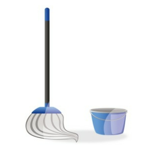 How Much Do Mops Cost