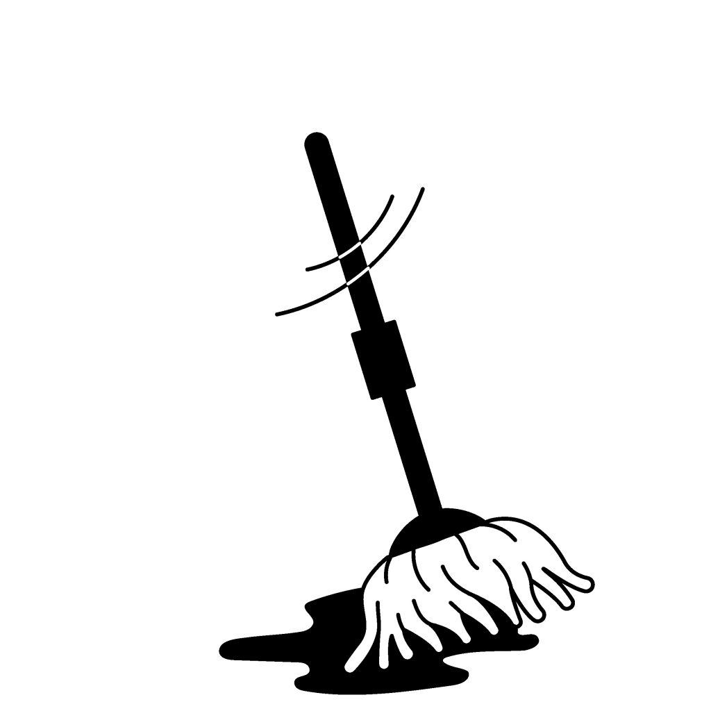 Types of Mops and Their Uses